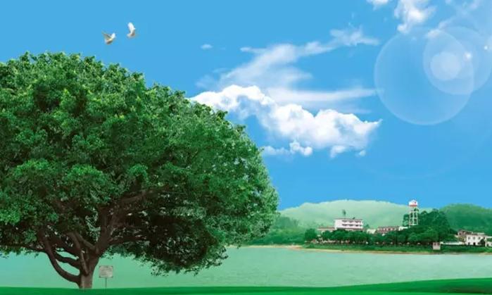 卡通太阳树苗素材